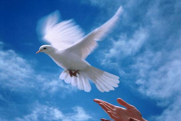 Oración por un mundo feliz